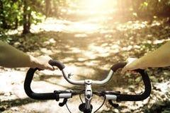 Катание велосипедиста на его велосипеде на заходе солнца в лесе Стоковое Фото