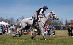 Катание женщины в серой лошади в гонке по пересеченной местностей Стоковые Фотографии RF
