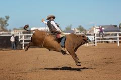 Катание ковбоя Bucking Bull на родео страны Стоковое фото RF