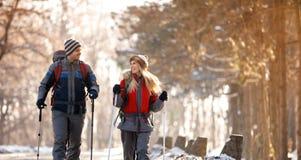 Катание на лыжах мальчика и девушки в лесе Стоковое Фото