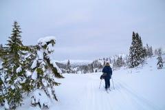 катание на лыжах Норвегии Стоковое Изображение