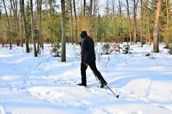 катание на лыжах страны перекрестное старшее Стоковые Фотографии RF