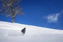 катание на лыжах уклада жизни Стоковые Изображения RF