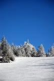 катание на лыжах холма Стоковое Изображение