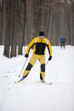 катание на лыжах человека страны перекрестное Стоковые Изображения