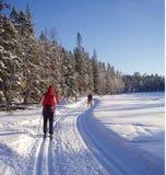 катание на лыжах Стоковые Фотографии RF