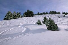 катание на лыжах -piste: трассировки в снеге Стоковое Изображение