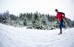 Катание на лыжах молодого человека вездеходное на снежной тропке пущи Стоковое фото RF