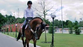 Катание парня на лошади в парке видеоматериал