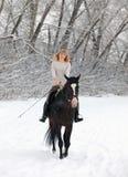 Катание следа в парке зимы Стоковые Изображения RF