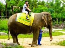 Катание слона Стоковая Фотография RF