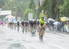 Катание Peloton в дожде - Тур-де-Франс 2014 Стоковые Фотографии RF