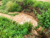 Катаракта после проливного дождя стоковые фото
