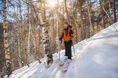 Кататься на лыжах в лесе зимы стоковые фотографии rf