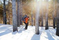 Кататься на лыжах в лесе зимы стоковое фото