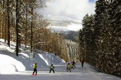 кататься на лыжах детей Стоковая Фотография