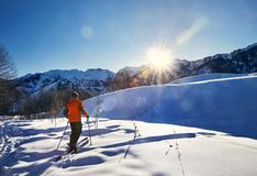 Кататься на лыжах на свежем снеге порошка стоковое изображение rf