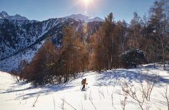 Кататься на лыжах на свежем снеге порошка стоковое фото