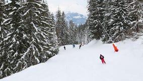 Кататься на лыжах вниз с следа сток-видео