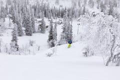 Кататься на лыжах в замороженной стране чудес Стоковые Изображения RF