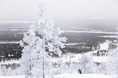 Кататься на лыжах над Полярным кругом Стоковая Фотография