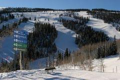 Катающся на лыжах в Aspen, Колорадо Стоковое Изображение RF