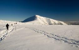 катаясь на лыжах зима трека Стоковая Фотография RF
