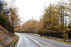 Категории пейзажа: Mount Fuji в пейзаже извилистой дороги Японии Стоковая Фотография