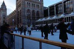 Каток льда на музее естественной истории, Лондон Стоковое Фото