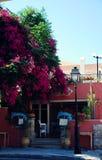 Кафе в Крите стоковая фотография rf