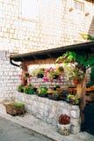 Кафе улицы Кафе в Черногории Стоковые Изображения