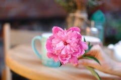 Кафе улицы Уютное внешнее кафе Стоковое Изображение