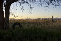Качание автошины веревочки Стоковая Фотография RF