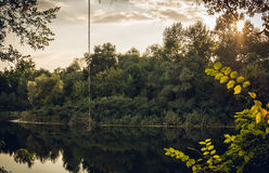 Качание веревочки в солнце вечера над заходом солнца реки Стоковая Фотография