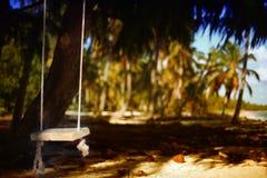 Качание веревочки в тропическом лесе Стоковые Фото
