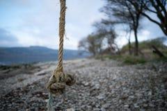Качание веревочки над Pebble Beach Стоковая Фотография