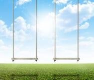 Качание веревочки на зеленом поле Стоковые Фото