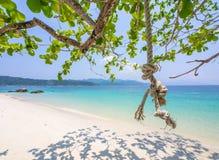 Качание веревочки на пляже Стоковые Фото