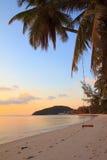 Качание веревочки на тропическом пляже Стоковые Изображения