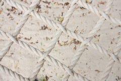 качание веревочки пляжа Стоковое Изображение RF