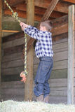 Качание веревочки Стоковое фото RF