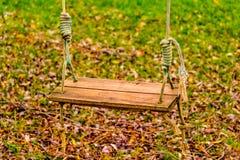 Качание в осени Стоковое Изображение RF