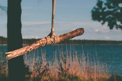Качание дерева веревочки на озере Стоковые Изображения