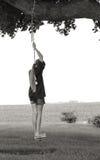 Качание девушки и дерева Стоковое Фото