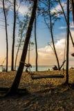 Качание на пляже Стоковое Фото