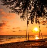 Качание на пляже Стоковое Изображение RF