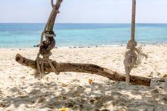 Качание на тропическом острове Стоковое Изображение RF