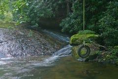 Качание & поток автошины Стоковая Фотография