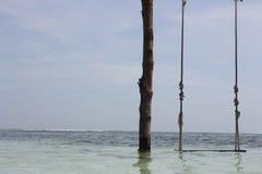 Качание пляжа Стоковая Фотография RF