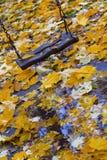 Качание Стоковые Фотографии RF